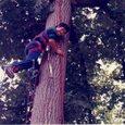 人工登攀訓練