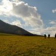 七時雨山の草原
